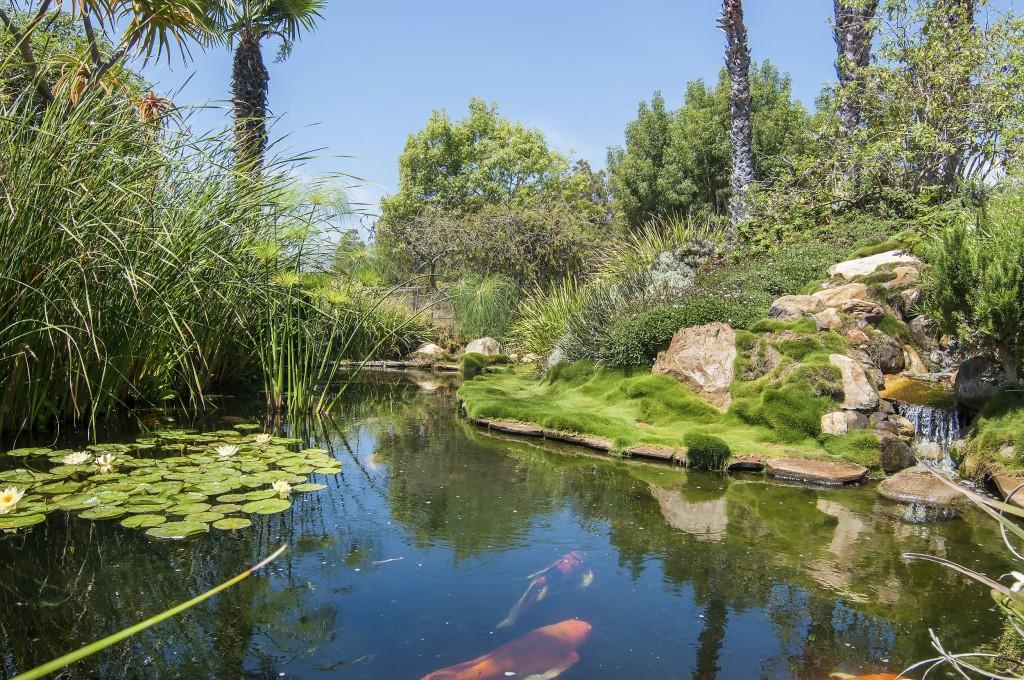 a-koi-pond-provides-a-meditative-retreat-although-the-property-itself-is-already-plenty-quiet