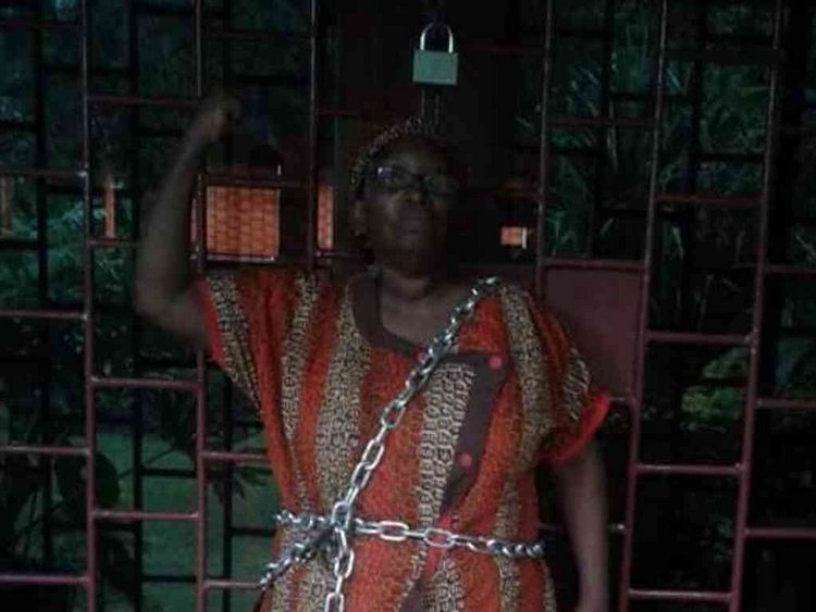Stella Nyanzi had no kind words for father Lokodo