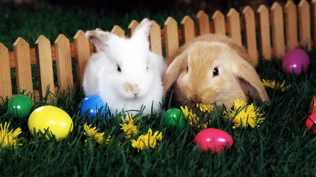 Are Some Of The Common Easter Traditions Un-Christian?